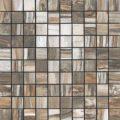 fossil mosaico